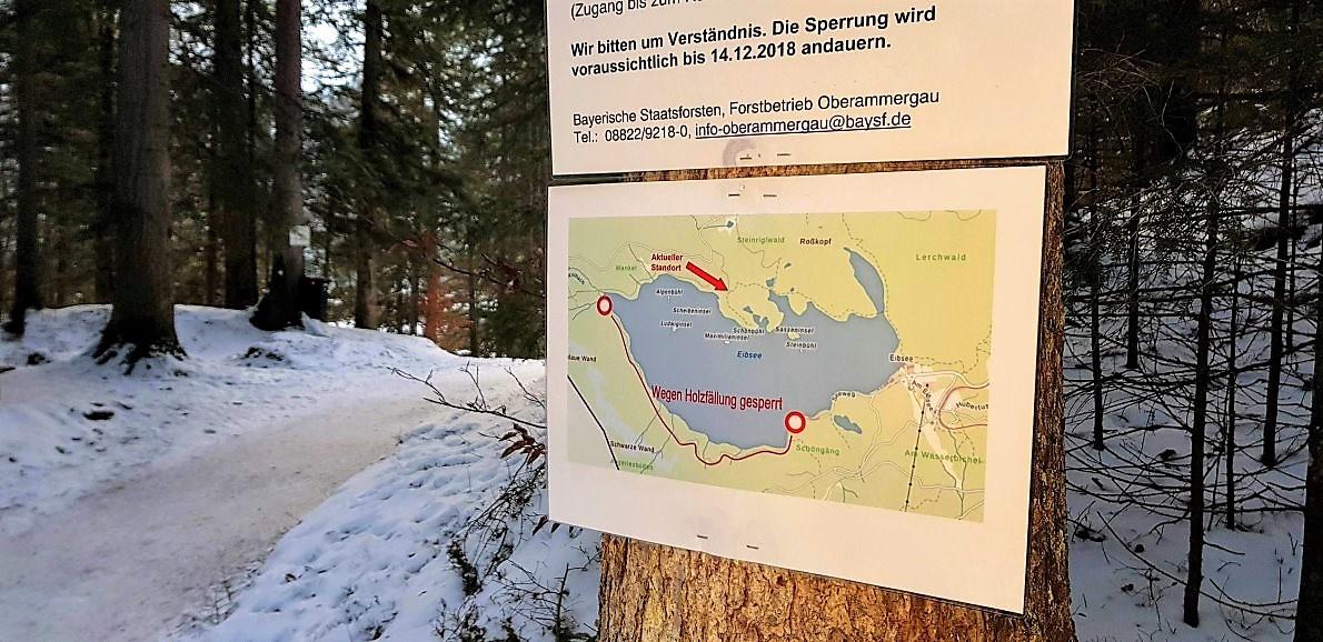 Von Dezember bis Mitte Januar wird am Eibsee Holz geerntet. (Foto: Knut Kuckel)